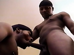 Team a few attractive black gay friends taste continually other's dicks coupled with asses