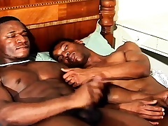 Duo sexy gay black studs enjoying each other's big cocks chiefly the bed